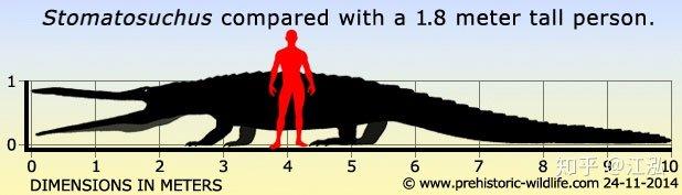 Stomatosuchus inermis: Loài cá sấu cổ đại có thể nuốt chửng cả thế giới