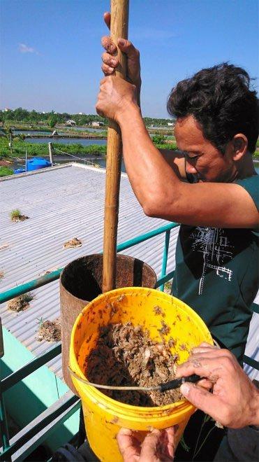 Sử dụng bùn ao và chất thải, các nhà khoa học tạo ra hệ thống sản xuất điện hiệu quả nhất