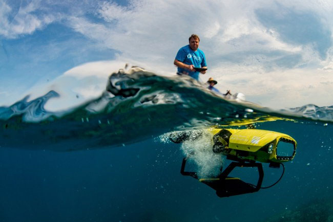 Sử dụng robot bảo vệ san hô