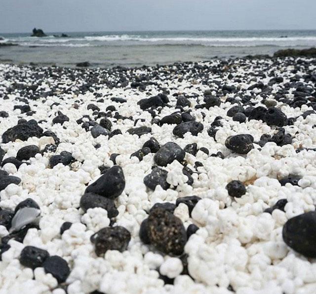 Sự thật bất ngờ đằng sau bãi biển toàn bỏng ngô ở Tây Ban Nha
