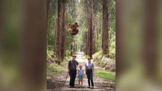 Sự thật về loài gấu ăn thịt hung tợn trong truyền thuyết Australia