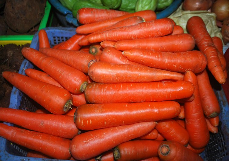 Tác dụng của cà rốt làm tăng tính kết dính của xi măng