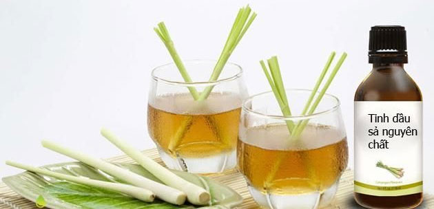 Tác dụng của tinh dầu sả và cách làm tinh dầu sả đơn giản tại nhà