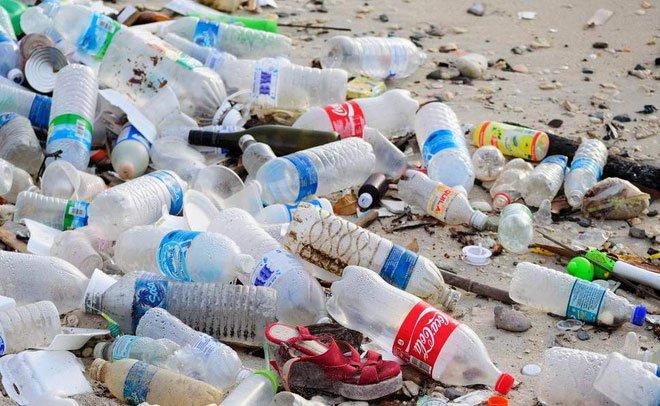 Tái chế chai nhựa tới 97%: Đây chính là quốc gia cả thế giới cần học theo