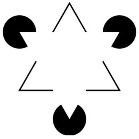 Tại sao chúng ta lại có hứng thú đặc biệt với những thứ có tính đối xứng?
