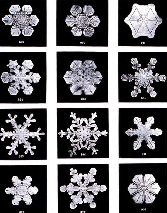 Tại sao có hiện tượng tuyết rơi?