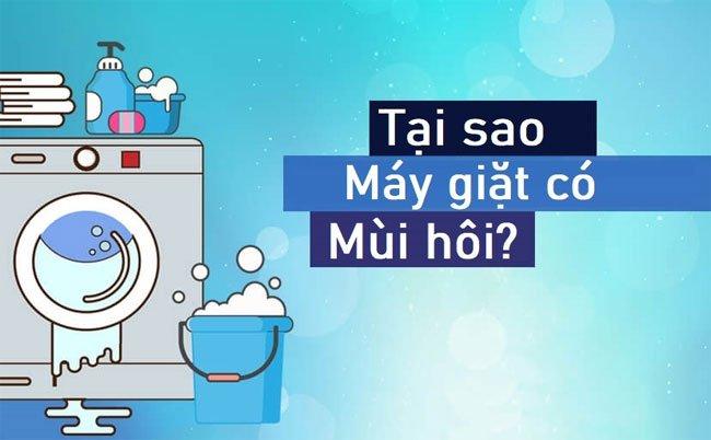 Tại sao lồng máy giặt lại bị hôi?