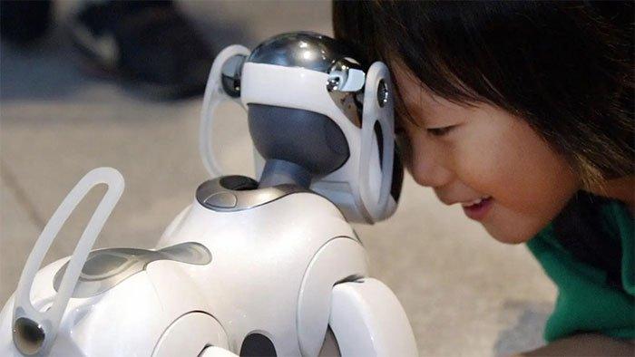 Tại sao thú cưng robot không thể thay thế được thú cưng thật?