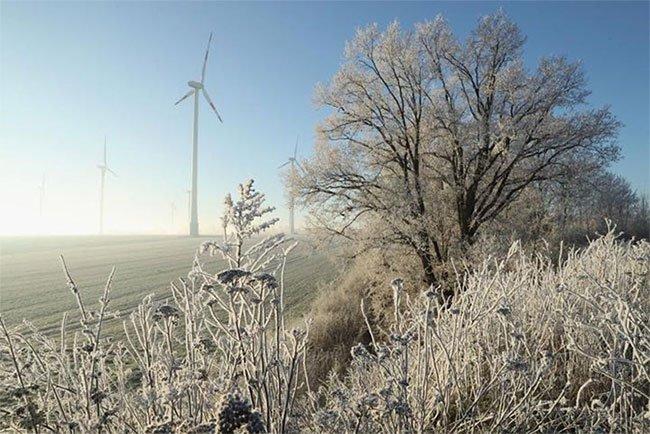 Tại sao turbine gió không bị đông cứng trong khí hậu lạnh?