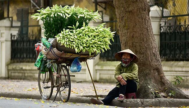 Tháng tư về, hoa loa kèn tinh khôi xuống phố Hà Nội