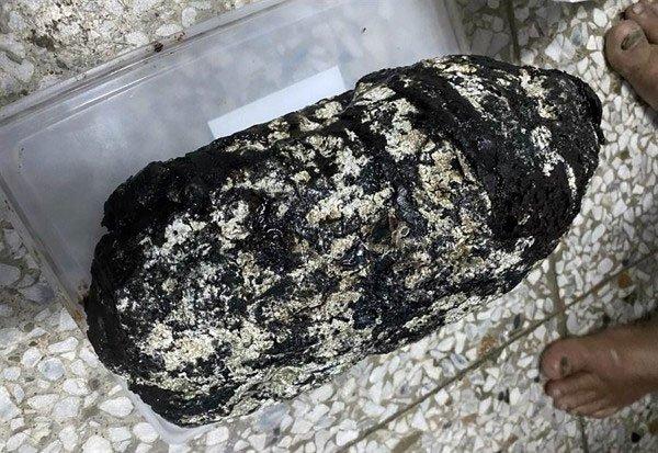 Thấy khối đá lạ ngoài biển, đem về nhà không ngờ là báu vật hàng trăm nghìn USD
