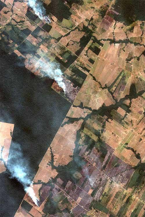 The New York Times: Phân tích ảnh vệ tinh đã chỉ ra chính xác thủ phạm gây cháy rừng Amazon