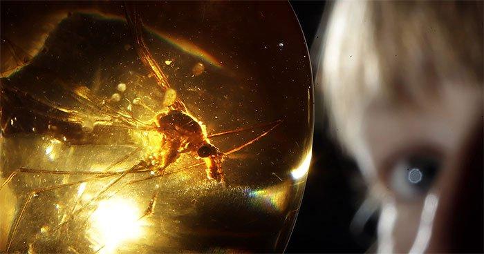 Thí nghiệm công viên kỷ Jura sẽ ra sao nếu thay khủng long bằng muỗi?