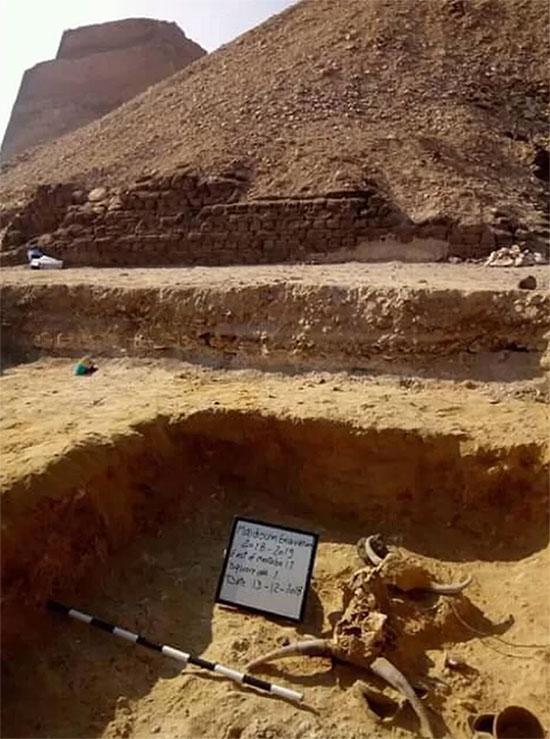 Thiếu nữ bí ẩn nằm bên đôi bò mộng trong mộ cổ Ai Cập