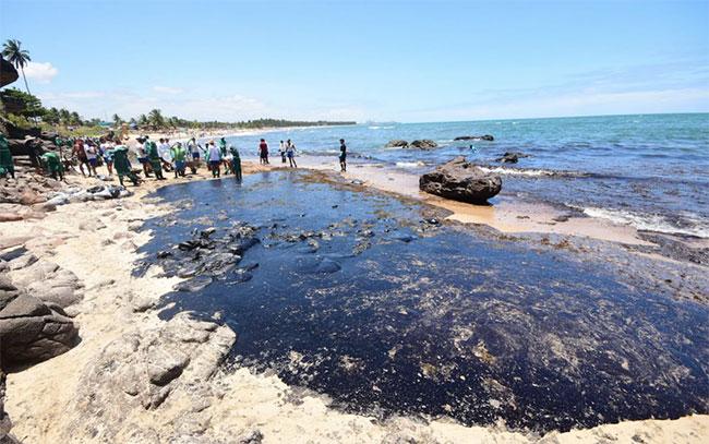 Thủy triều đen bí ẩn bóp nghẹt bờ biển hơn 4.400km của Brazil