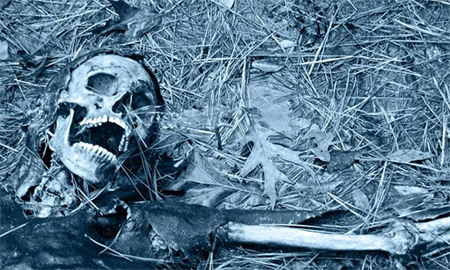 Tiến trình phân hủy của cơ thể người sau khi chết