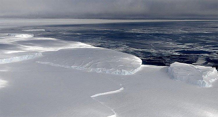 Tiếng hát đến từ Nam Cực sẽ là âm thanh ám ảnh bạn nhất trong ngày hôm nay
