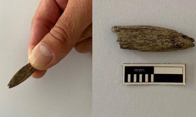 Tìm thấy công cụ 5.300 năm tuổi bằng xương kangaroo