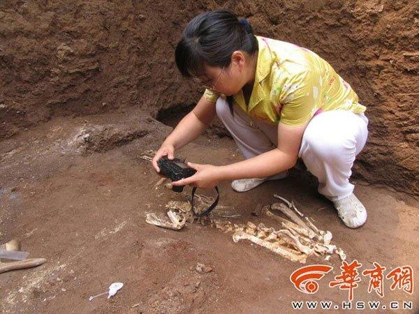 Tìm thấy giống loài chưa từng được biết đến trong lăng mộ bà nội Tần Thủy Hoàng