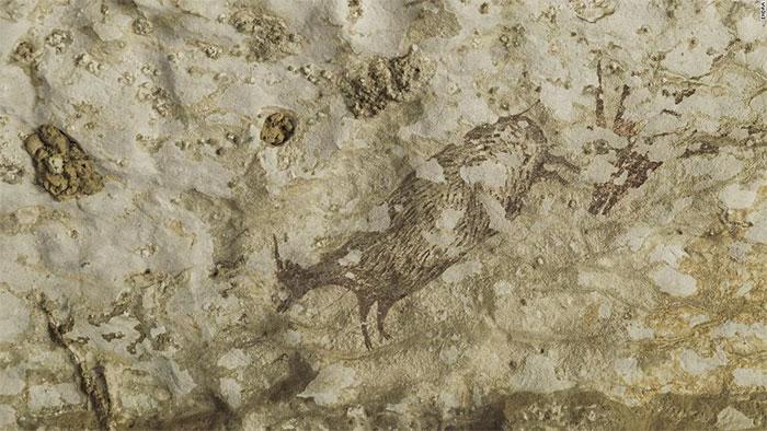 Tìm thấy tác phẩm nghệ thuật lâu đời nhất thế giới trong hang động ở Indonesia
