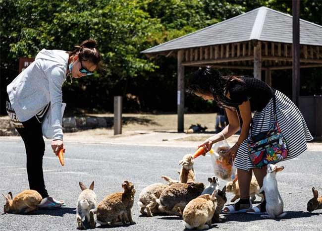 Top 10 điều bình thường ở Nhật nhưng lại lạ lẫm với du khách