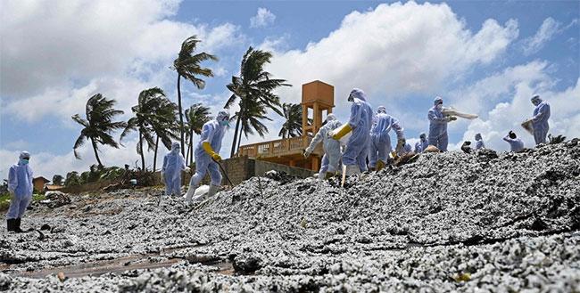 Trong tương lai, vùng biển Sri Lanka có thể sẽ chết