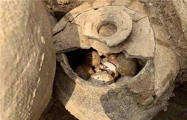 Trứng ngàn năm tuổi bất ngờ tìm thấy trong chiếc vại ở ngôi mộ cổ