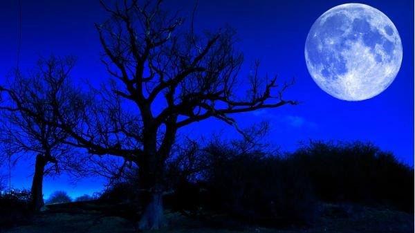 Vào đúng lễ Halloween năm nay, bạn sẽ thấy một điều đặc biệt và hiếm hoi ở trên bầu trời