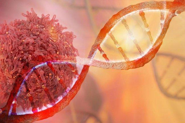 Vì sao bệnh ung thư dễ tái phát?