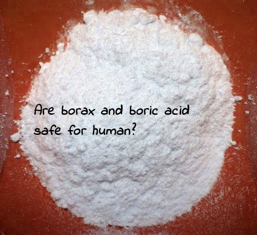 Vì sao borax (hàn the) và axit boric được dùng để diệt gián? Hai chất này có an toàn không?