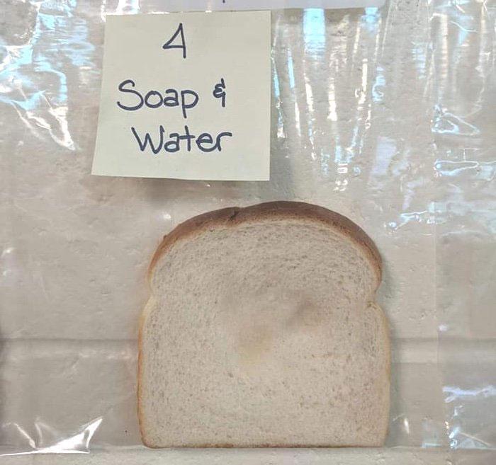 Vì sao chúng ta cần rửa tay trước khi ăn? Thí nghiệm này sẽ cho bạn biết rõ điều đó!