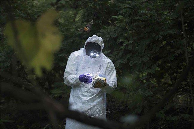 Vì sao giới khoa học lo sợ bệnh X bí ẩn tại Congo?