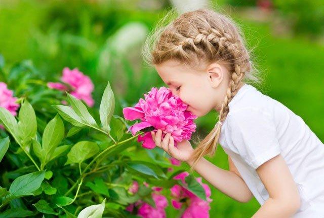 Vì sao hoa lại có mùi hương?