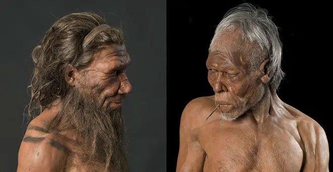 Vì sao trong số 7,7 tỷ người trên Trái đất, không một ai có khuôn mặt giống hệt nhau 100%?
