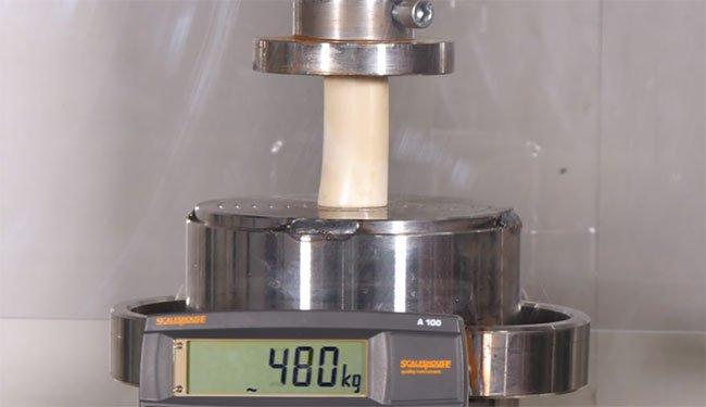 Video: Thử độ cứng của xương bằng máy ép thủy lực trăm tấn