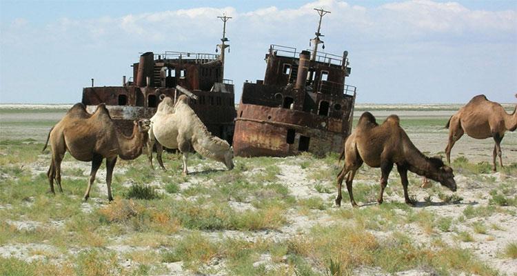 Video time lapse quá trình khô cạn của biển Aral trong vòng 50 năm qua