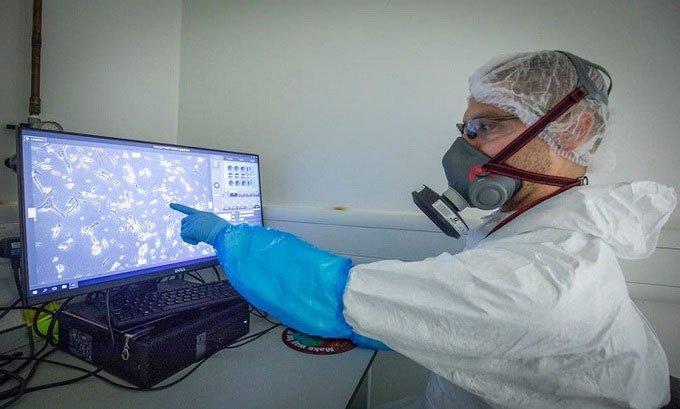 Virus cảm lạnh có thể ngăn chặn nCoV sao chép