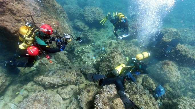 Vớt rác ngoài biển, bất ngờ tìm được một trong những kho báu lớn nhất châu Âu
