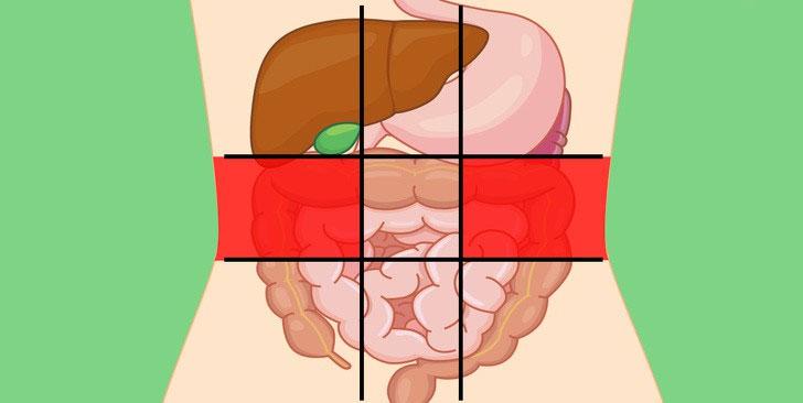 Xác định được ngay cơ thể đang gặp vấn đề gì qua từng vị trí khi đau bụng