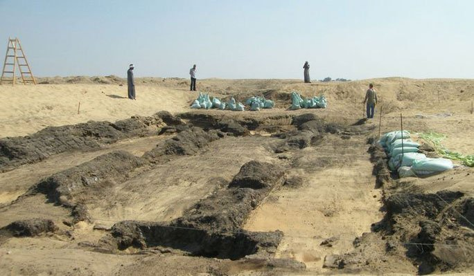 Xác ướp không phải người để lộ manh mối về Ai Cập xanh chưa từng biết
