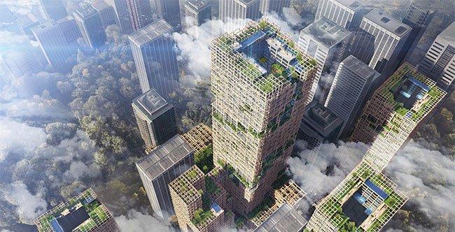 Xu hướng xây nhà chọc trời bằng gỗ
