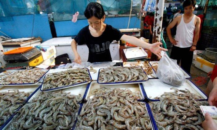 Xuất hiện virus bí ẩn ở Trung Quốc, một con tôm nhiễm bệnh hủy diệt cả đàn