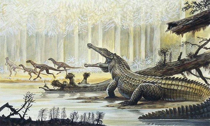 Yếu tố nào giúp cá sấu sống sót qua sự kiện tuyệt chủng?