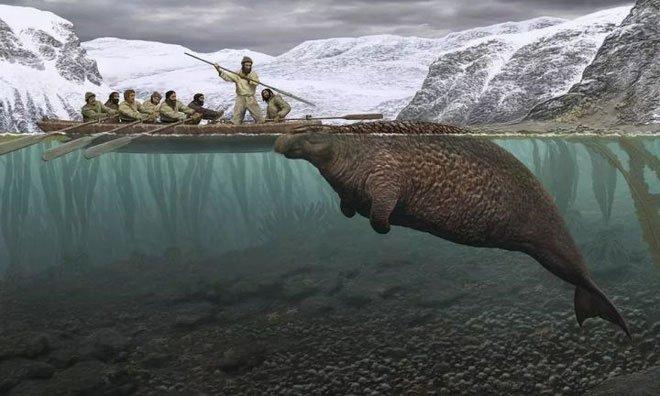 Chỉ mất 27 năm từ khi phát hiện ra đến khi tuyệt chủng, chuyện gì đã xảy ra với con vật khổng lồ này?
