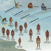 10 bí ẩn khoa học đang thách đố con người