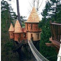"""10 ngôi nhà trên cây """"siêu đẹp"""" trên thế giới"""
