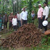 1000 hỏa tiễn của vua Ấn Độ chôn dưới giếng hoang