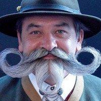 11 sự thật thú vị về ria mép và râu