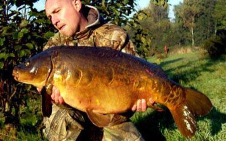 'Cụ' cá chép nặng 13,5 kg