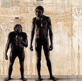 4 câu hỏi về họ hàng mới của loài người